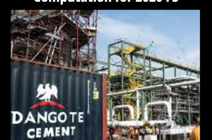 Dangote Cement Working Capital for 2020 Financial Statement