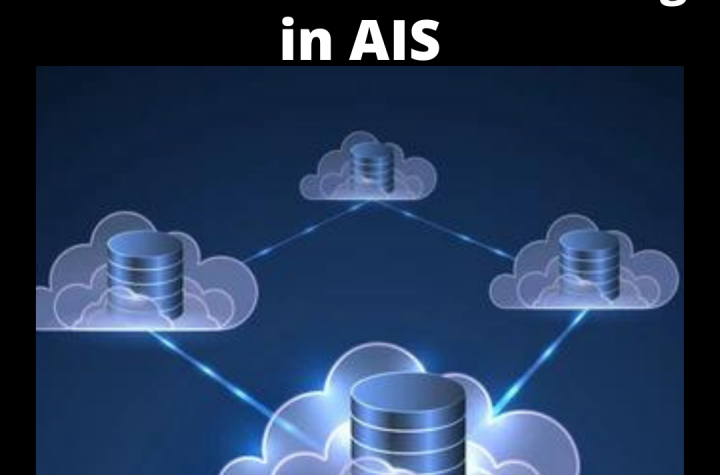 Meaning of Distributed Data Processing System in AIS